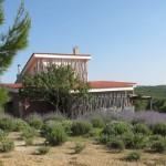 Villa Tabarka domeniul Ksar Ezzit regiunea Jougar din Tunisia