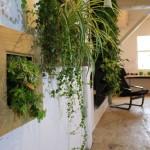 Tablouri verticale Foto By Nature Design