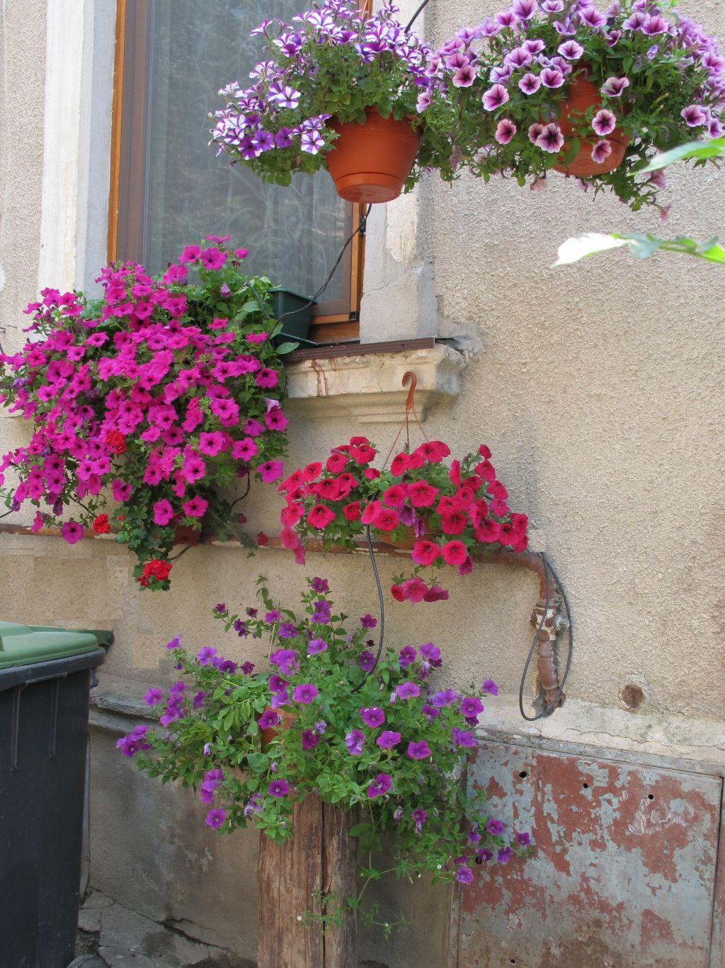 adelaparvu.com despre gradini urbane in Bucuresti 6