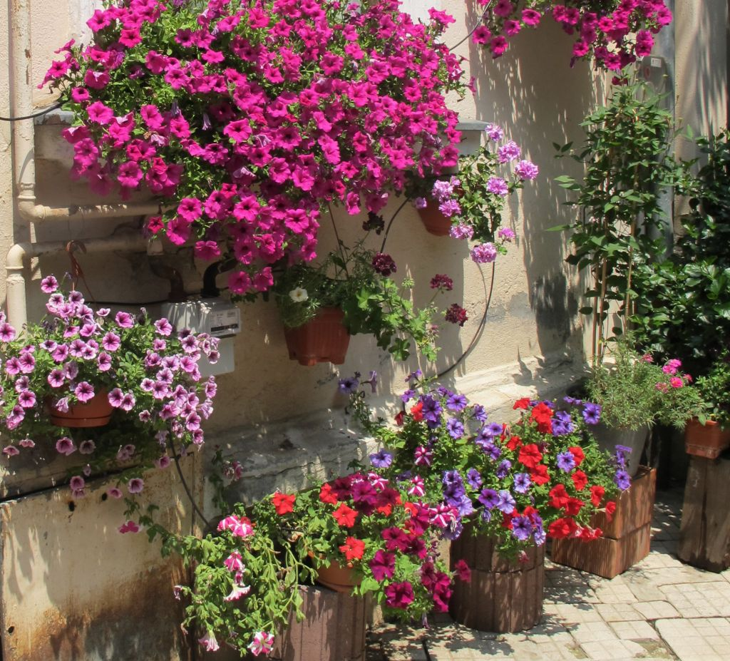 adelaparvu.com despre gradini urbane in Bucuresti 8