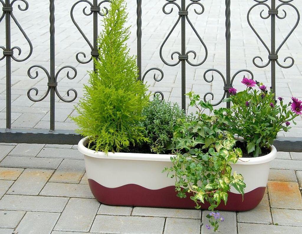 Jardiniera Mareta cu autoudare de la Agrocosm