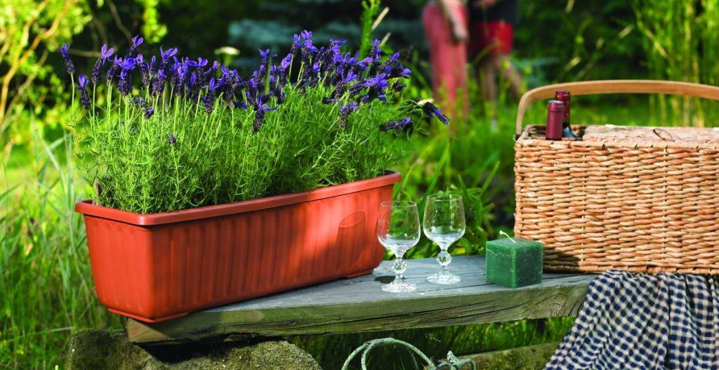 Jardiniera Siesta cu sistem autoudare de la Agrocosm