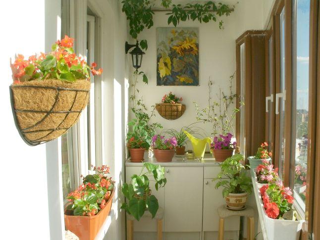 4 adelaparvu.com despre concurs IKEA pentru balcoane
