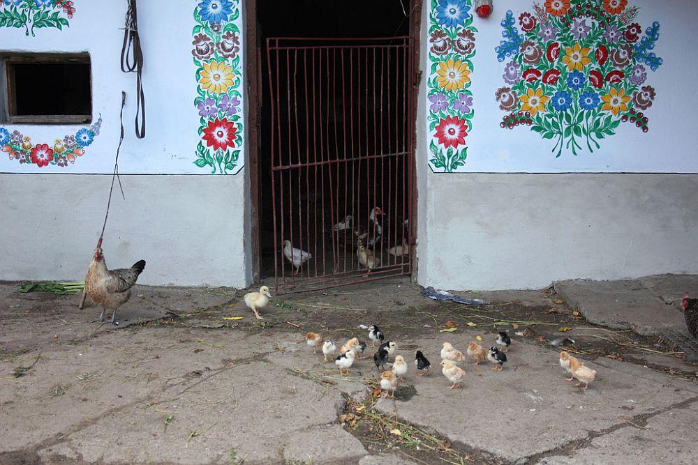 adelaparvu.com despre satul Zalipie (6)