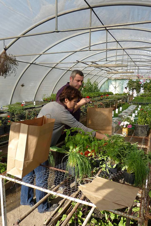 Cristina si Caludiu Ivascu pregatind cosurile cu legume pentru noi