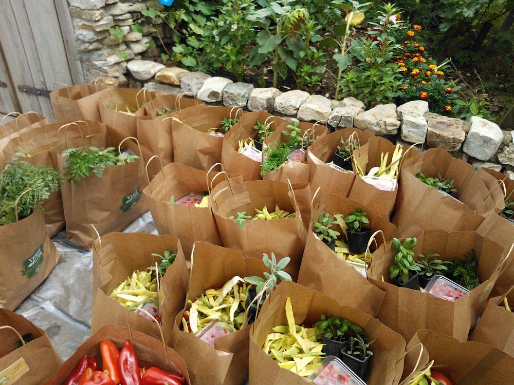 Asa arata la livrare cosurile de legume