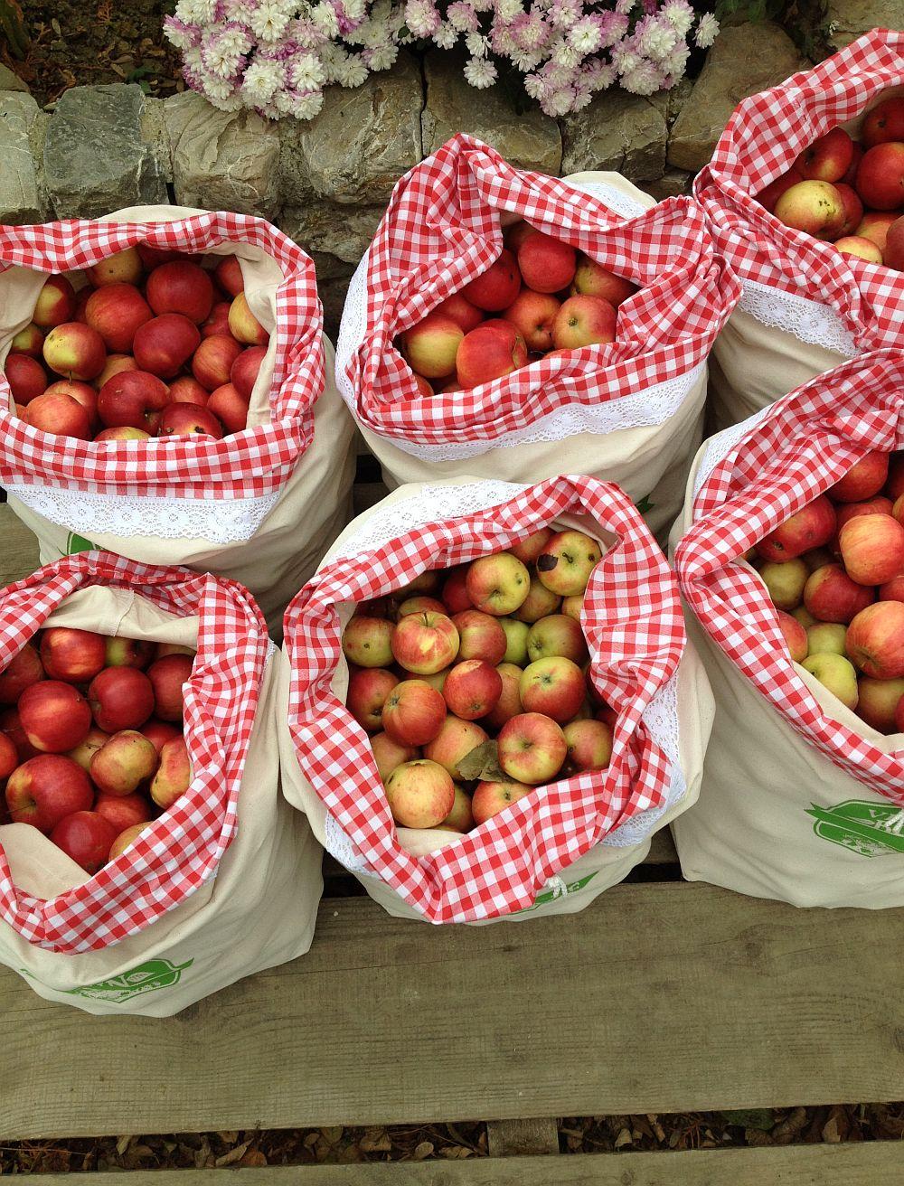 adelaparvu.com despre Verde Bun mere