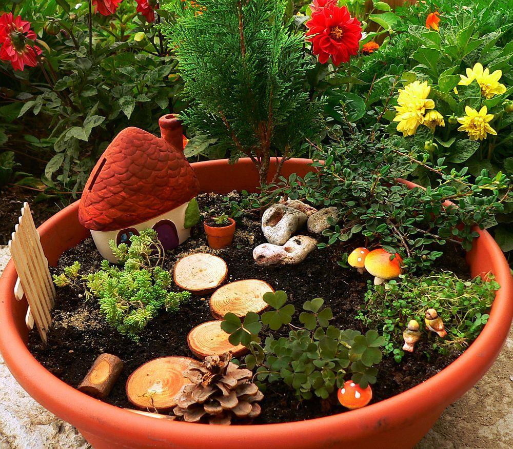 Locul 2 in top cele mai citite 10 articole despre plante si gradini 2013