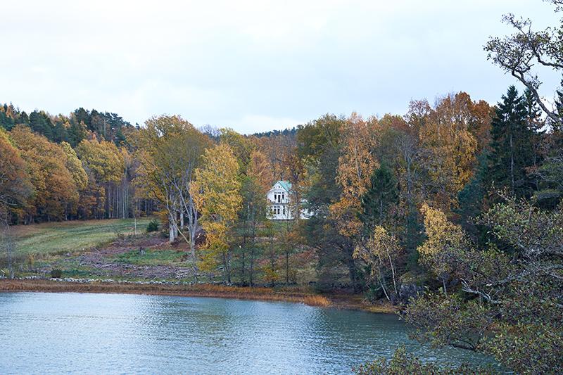 adelaparvu.com about Art Nouveau wood house Sweden Foto Stadshem (10)