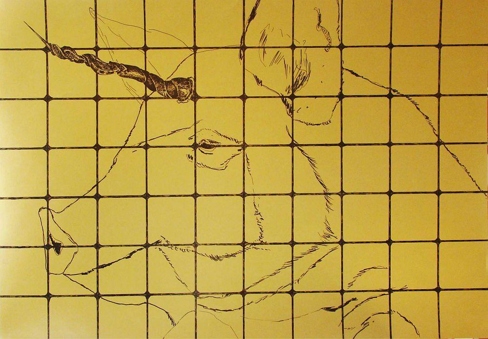Inorog porcesc, 100 x 70 cm