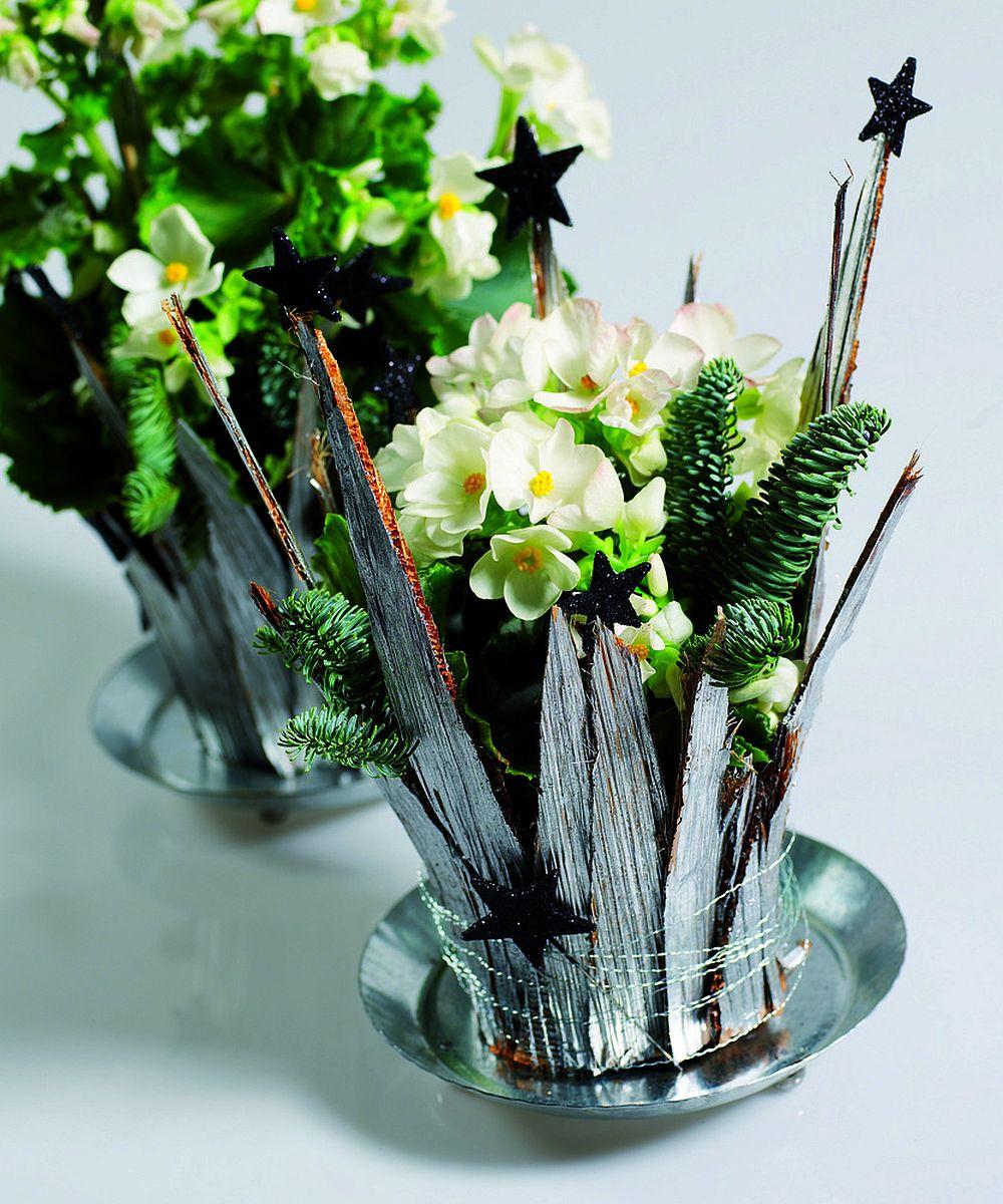 Begonia lorraine la ghiveci mascata de fasii de carton si decorata cu stelute