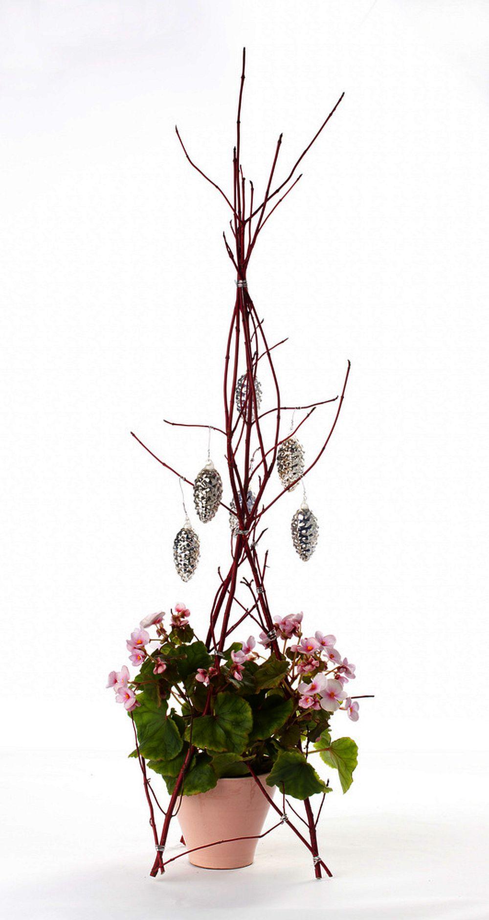 Begonia lorraine intr-o masca de ghiveci si cu decoratiuni din crengi deasupra