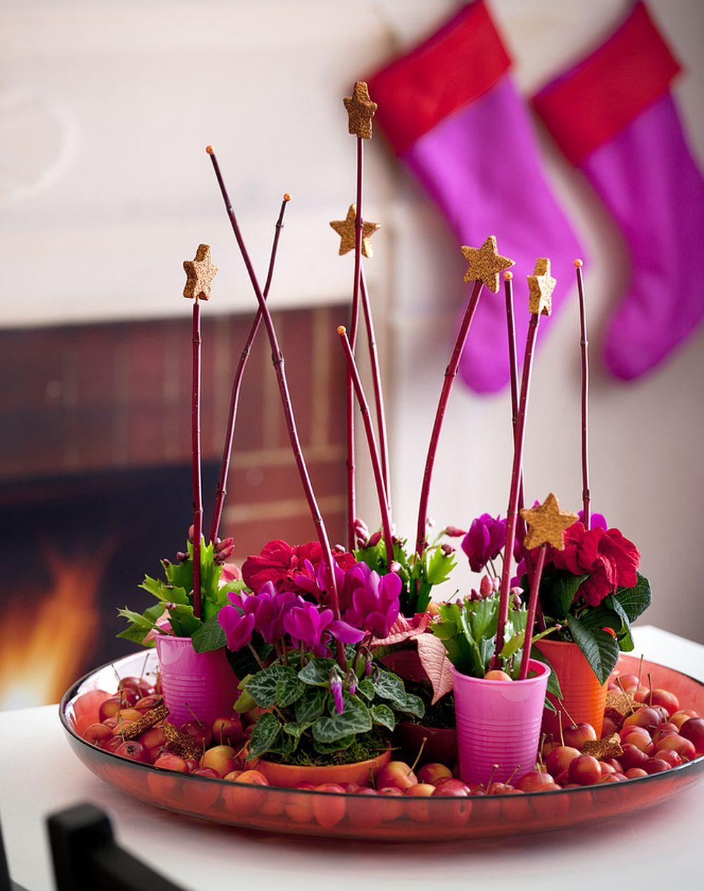 Cyclamen persicum puse in pahare colorate de plastic pe un platou decorat cu crengute si stele