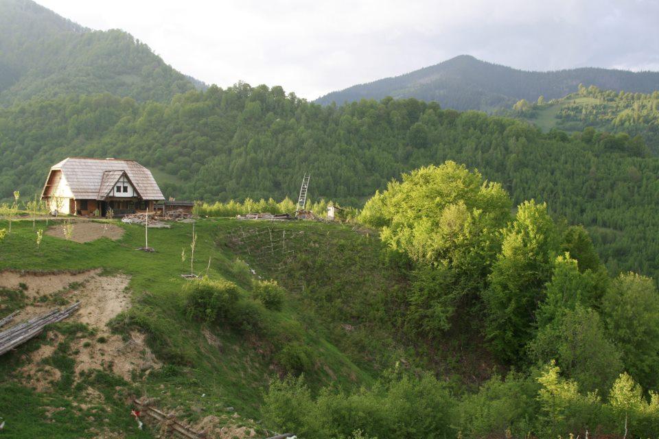 adelaparvu.com despre Sangeorz Bai si Maxim Dumitras (13)