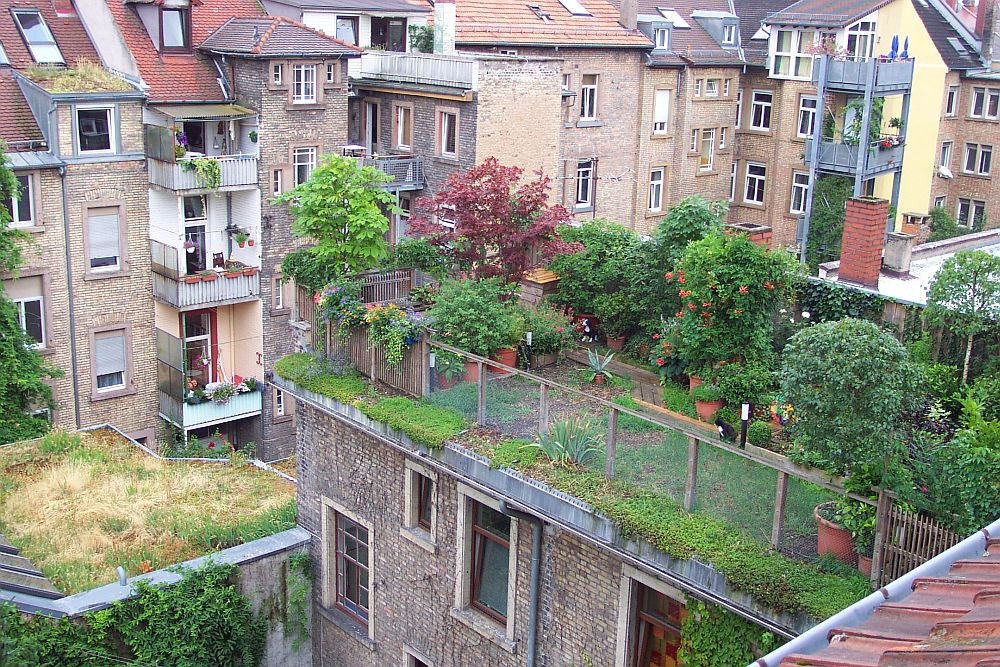adelaparvu.com about green roof, acoperisuri verzi, Photo FBB (2)