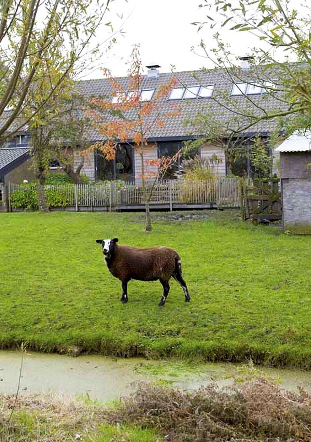 adelaparvu.com about modern farm, designer Larissa van Seumeren, Photo Viva Vida and Living Agency (4)