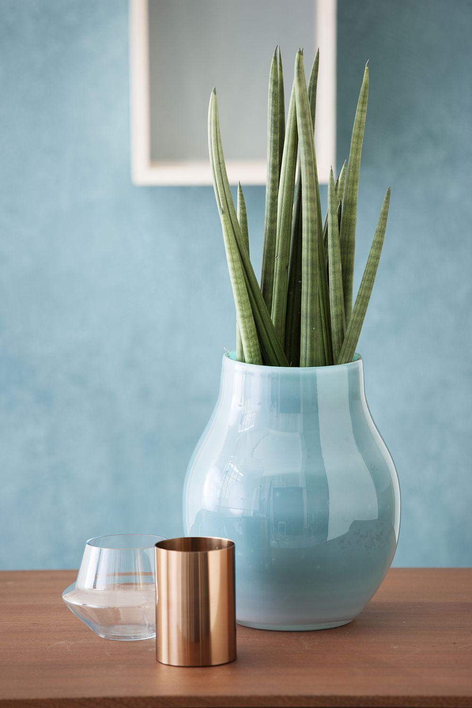 plante cu flori la ghiveci n trendul prim verii 2014 adela p rvu interior design blogger. Black Bedroom Furniture Sets. Home Design Ideas