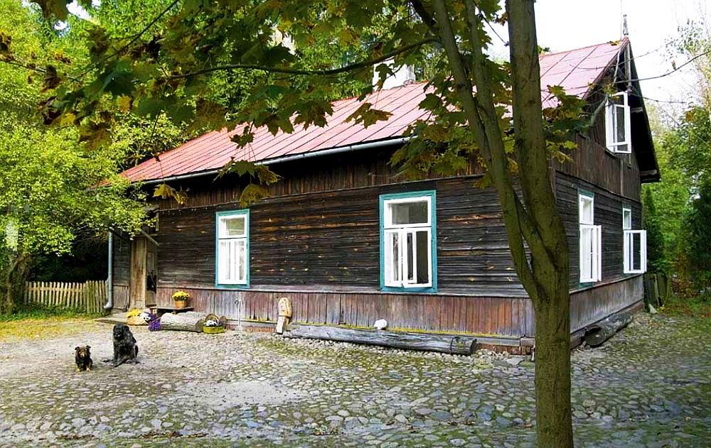 adelaparvu.com despre casa veche din lemn cu galerie de arta la tara, design Julita si Paul Sander, Foto Marek Szymanski (1)