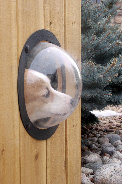 adelaparvu.com despre geam in gard pentru caini, PetPeek Fence Window, Foto Amazon (4)