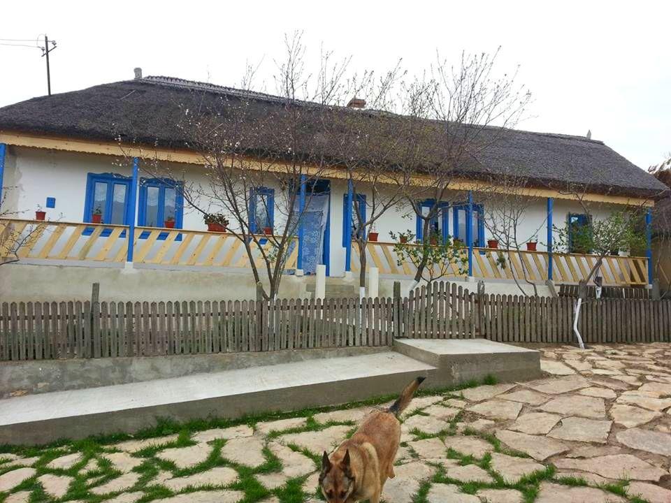 adelaparvu.com despre mester acoperisuri stuf Tanse Dobre (10)