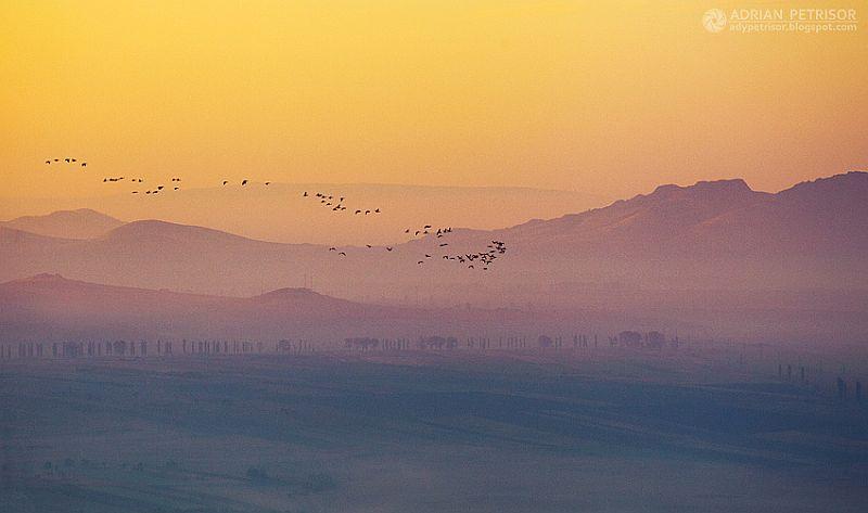 adelaparvu.com despre peisaje din Romania, Foto Adrian Petrisor (15)