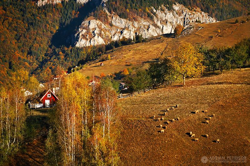 adelaparvu.com despre peisaje din Romania, Foto Adrian Petrisor (2)