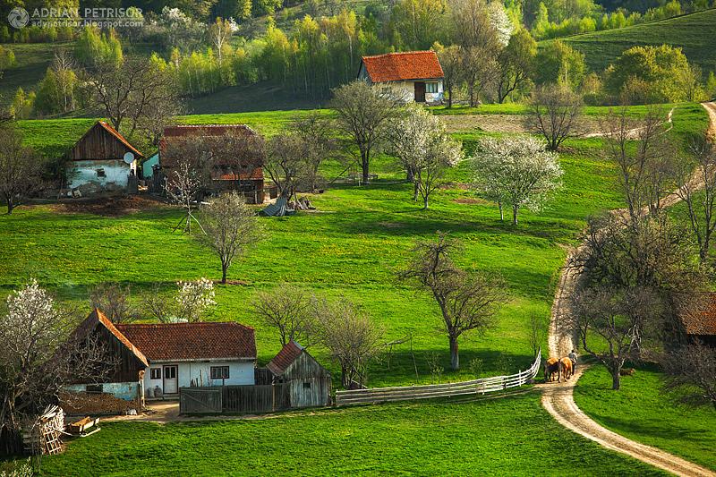 adelaparvu.com despre peisaje din Romania, Foto Adrian Petrisor (7)