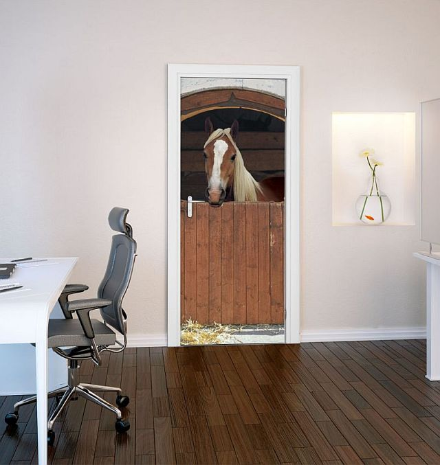 adelaparvu.com despre tapete pentru usa, fototapete pentru mascarea usilor (9)