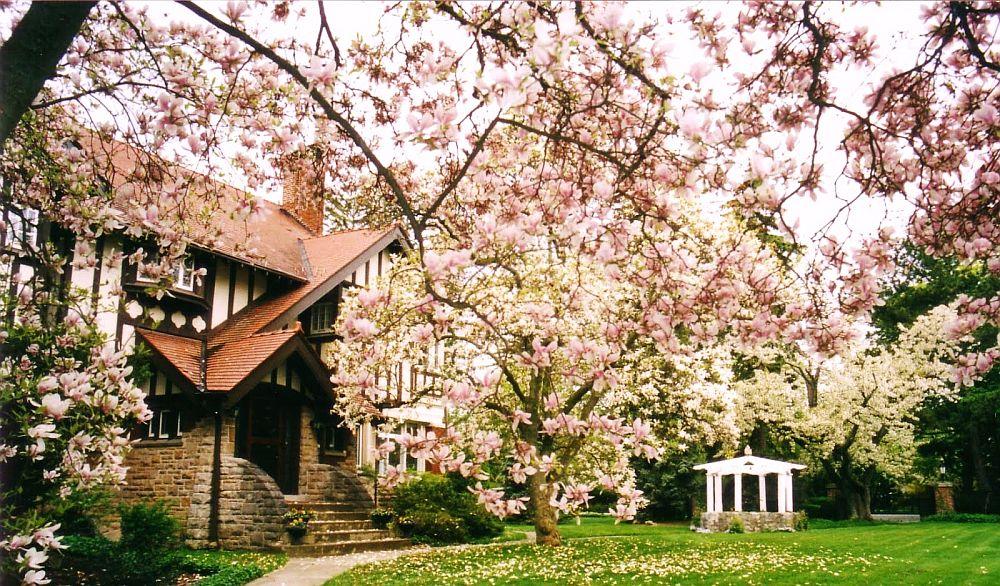 adelaparvu.com despre Magnolia, text Carli Marian (13)