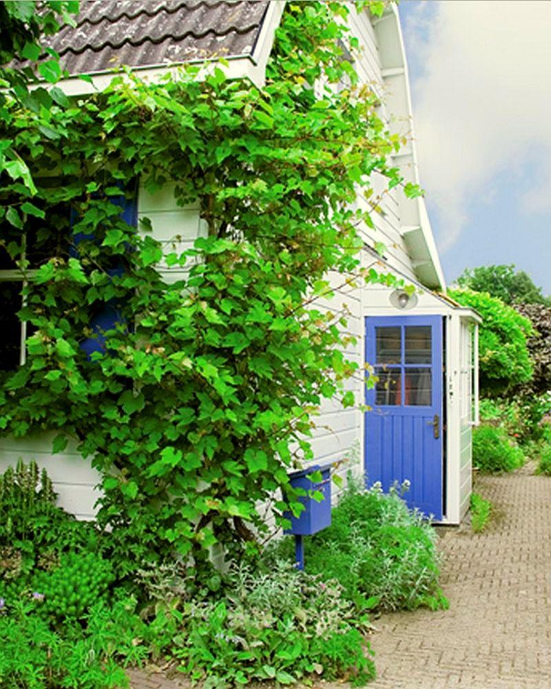adelaparvu.com despre casa de pictor la tara, artist Juke Hudig, Foto Taverne Agency John Dummer (7)