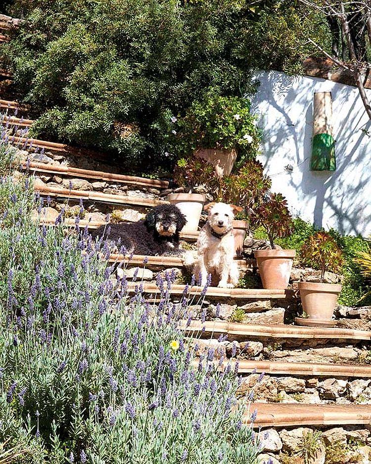 adelaparvu.com despre casa rurala Andaluzia Spania, casa pentru familie, Foto Micasa (18)