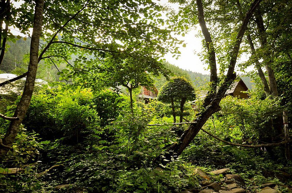 adelaparvu.com despre casa rustica cu gradina langa Piatra Neamt, peisaj de vara, Foto Romulus Boicu  (14)