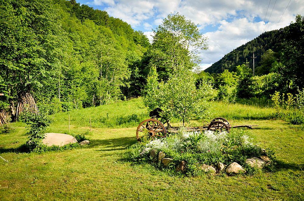 adelaparvu.com despre casa rustica cu gradina langa Piatra Neamt, peisaj de vara, Foto Romulus Boicu  (33)