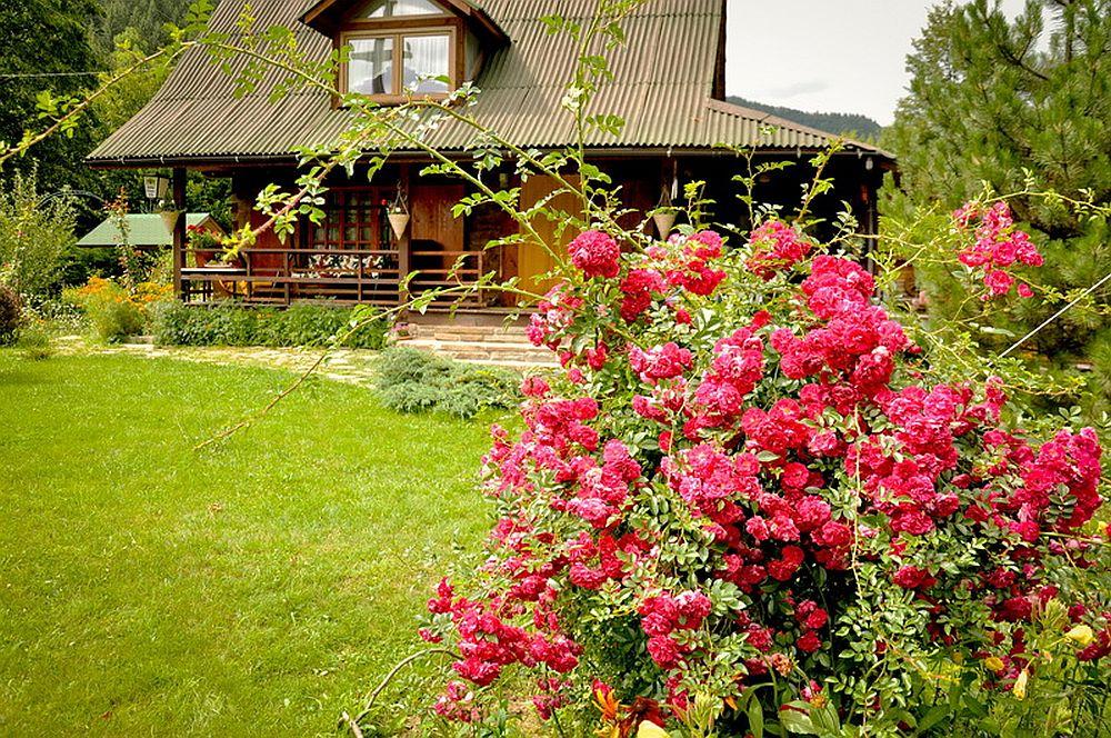 adelaparvu.com despre casa rustica cu gradina langa Piatra Neamt, peisaj de vara, Foto Romulus Boicu  (7)