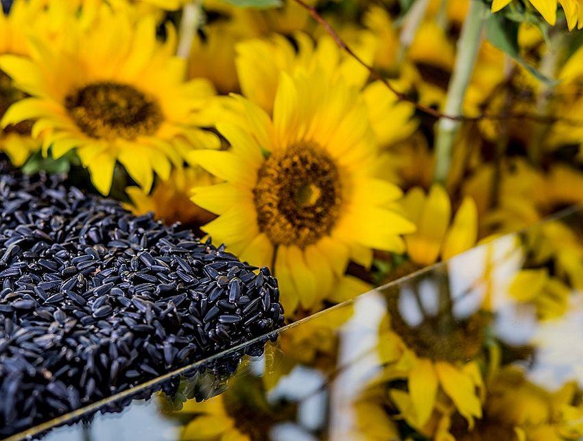 adelaparvu.com despre design floral, designer Nicu Bocancea, creatii publicate in International Floral Art 2014 - 2015 (5)