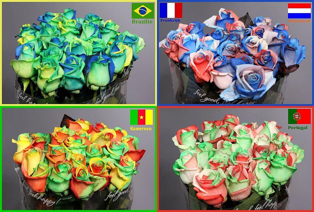adelaparvu.com despre inventatorul Peter van de Werken, trandafiri curcubeu, flori curcubeu, Rainbowed Roses (11)
