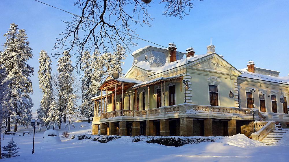 adelaparvu.com despre Conacul Polizu, Polizu Manor, Romania (27)