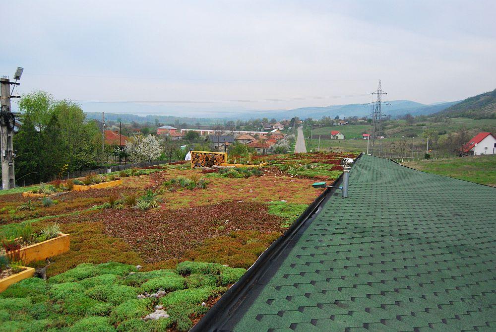 adelaparvu.com despre acoperis verde la Berca, gradina pe acoperis, design si executie Arta Gradinilor (9)