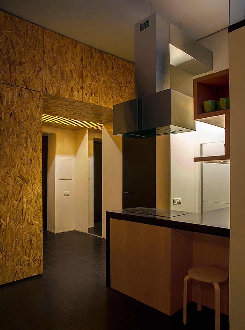 adelaparvu.com despre amenajare apartament de doua camere, mobila cu OSB, concept Constant Motion, arhitect AlexBykov (12)