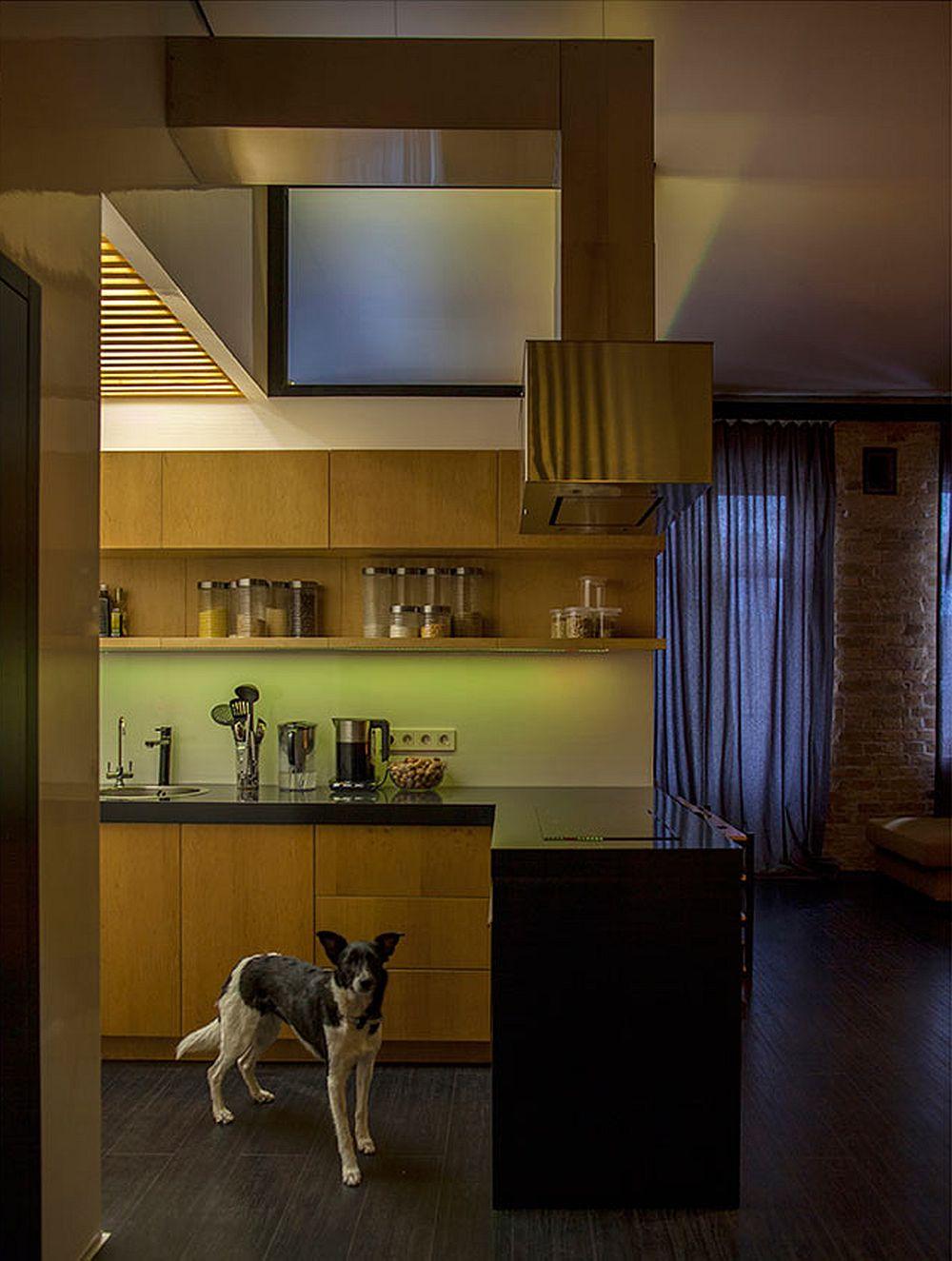 adelaparvu.com despre amenajare apartament de doua camere, mobila cu OSB, concept Constant Motion, arhitect AlexBykov (13)