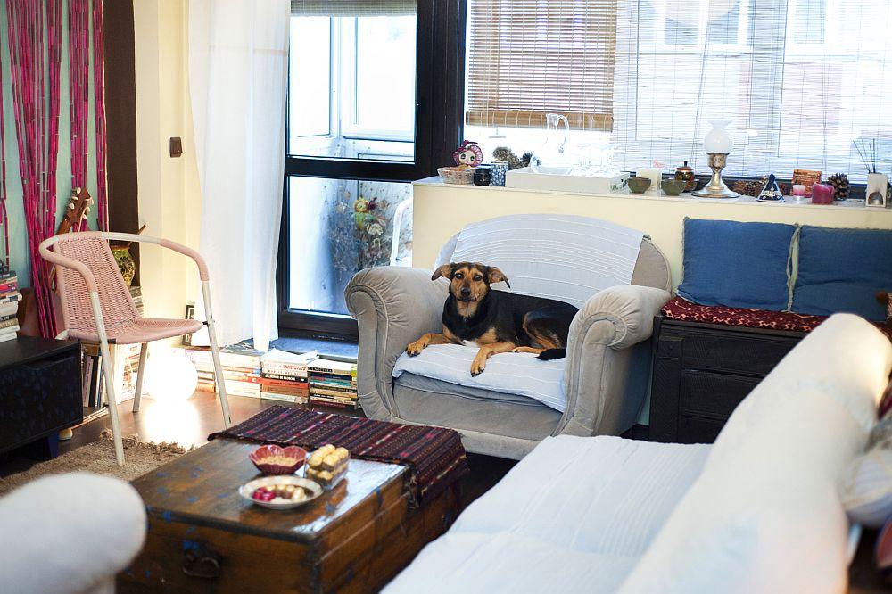 adelaparvu.com despre apartament boem de doua camere Bucuresti, designer Mihaela Poenaru, Foto Dragos Boldea (25)
