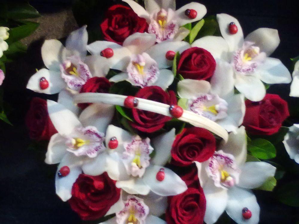 adelaparvu.com despre buchete de flori frumoase la preturi bune in Bucuresti, Text si Foto Irina Anghel (5)