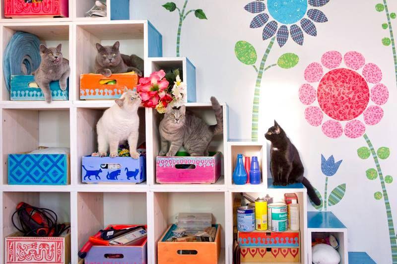 adelaparvu.com despre casa colorata, gard cu forma de creioane, interioare colorate, idei creative acasa, designer Bine Braendle (66)