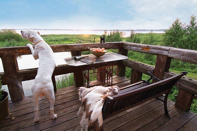 adelaparvu.com despre casa din caramida pe malul apei, casa Polonia, Foto Sara Niedzwiecka  (10)