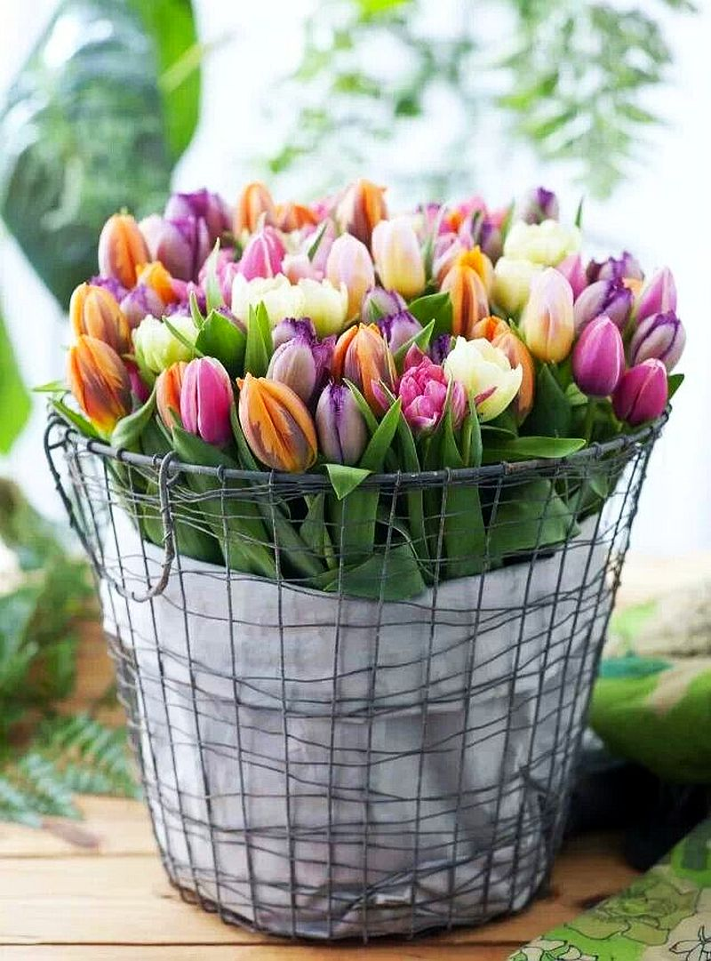 adelaparvu.com despre cum sa pastrezi mai mult timp lalelele in vaza (1)