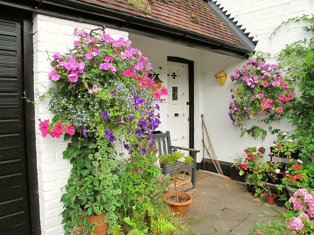 adelaparvu.com despre jardiniere cu flori multicolore, Text Carli Marian (2)