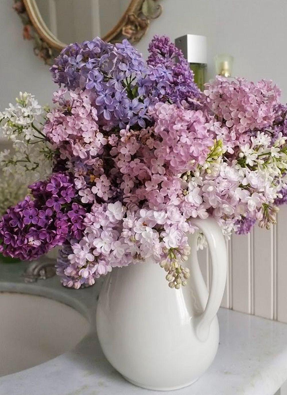 adelaparvu.com despre liliac, cum pastrezi liliacul mai mult timp in vaza, Text Carli Marian (2)