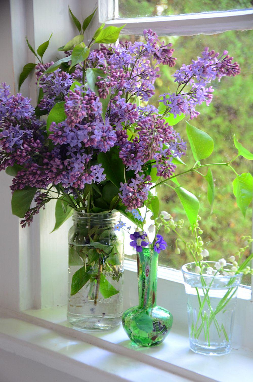 adelaparvu.com despre liliac, cum pastrezi liliacul mai mult timp in vaza, Text Carli Marian (7)