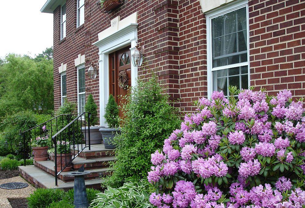 adelaparvu.com despre unde se planteaza azaleea de gradina si rododendronul, Text Carli Marian (1)