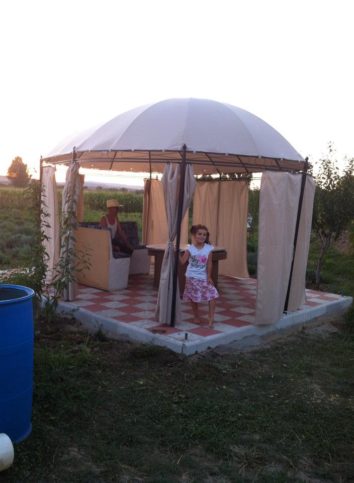 adelaparvu.com despre Anca Serpar proprietar Lavanda Lola, camp de lavanda Cluj (5)